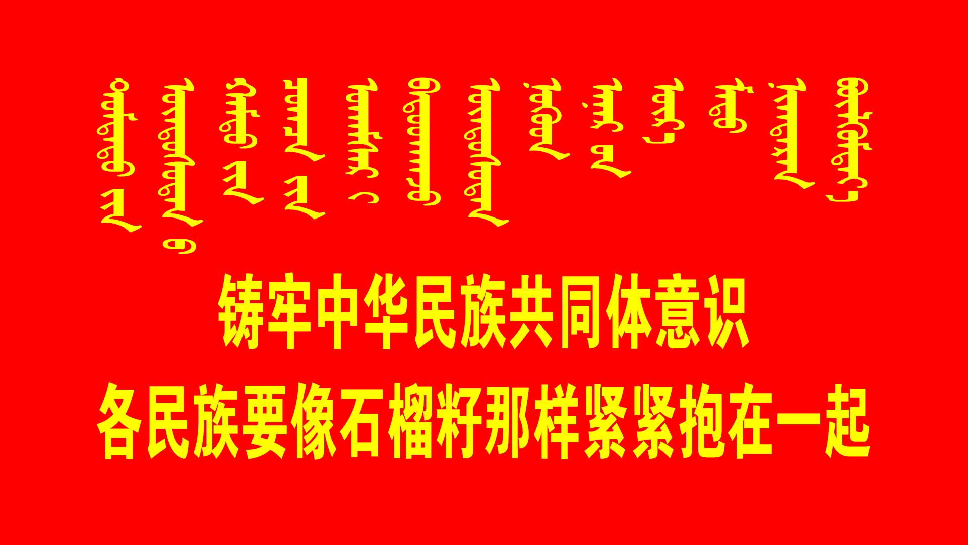 民族团结标语